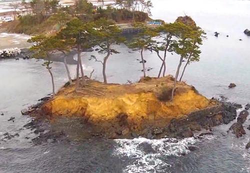御伊勢浜を空撮動画